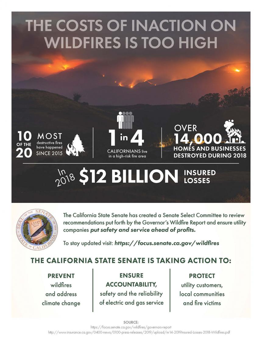 California Wildfire Handout